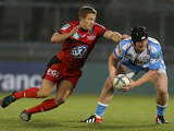 Toulon's Johnny Wilkinson attempts to hold back Sale's Ross Harrison on December 8, 2012