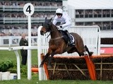 Holywell being ridden during Cheltenham on March 14, 2013