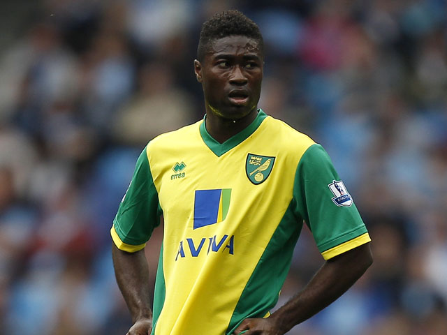 Norwich City's Alexander Tettey during the Premier League match against Manchester City on May 19, 2013