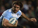 Argentina's Marcelo Bosch in action against New Zealand on September 28, 2013