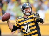 Ben Roethlisberger of the Pittsburgh Steelers drops back to pass during the second quarter against the Detroit Lions on November 17, 2013