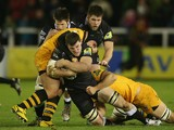 Mark Wilson of Newcastle is tackled by Carlo Festuccia and Sam Jones during the Aviva Premiership match between Newcastle Falcons and London Wasps at Kingston Park on December 27, 2013