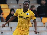 Rohan Ince of Brighton & Hove Albion celebrates his goal during the FA Cup fourth round match between Port Vale and Brighton Hove Albion at Vale Park on January 25, 2014