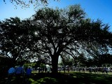 Patrons walking past the Eisenhower Tree during the third round of the 2012 Masters Tournament at Augusta National Golf Club on April 7, 2012