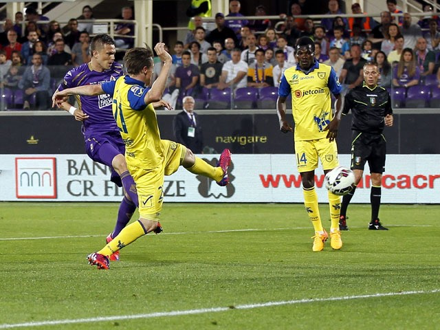 Josip Ilicic of ACF Fiorentina scores the opening goal during the Serie A match between ACF Fiorentina and AC Chievo Verona at Stadio Artemio Franchi on May 31, 2015