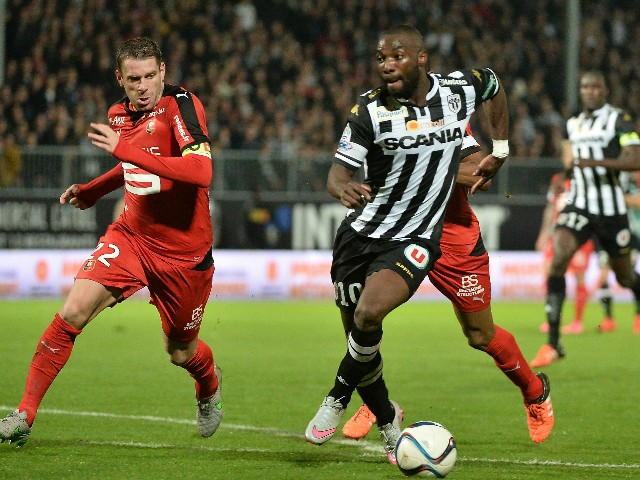 Image result for angers fc